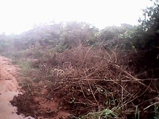 Land For Sale In Igbariam, Anambra State, Nigeria